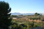 Resale - Finca / Country Property - Albatera